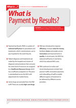 what is payment by results